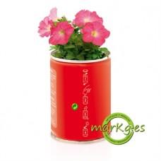 Lata con semillas de Petunia Personalizada. Regalo invitados Boda